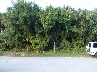 Volusia County Residential Lots & Land For Sale: 25 Oak Tree Drive