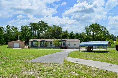 Deland Single Family Home For Sale: 32746 Fl-44