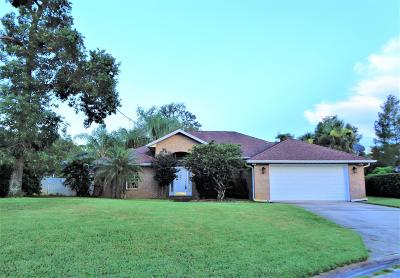 Volusia County Single Family Home For Sale: 3 Silver Lake Way
