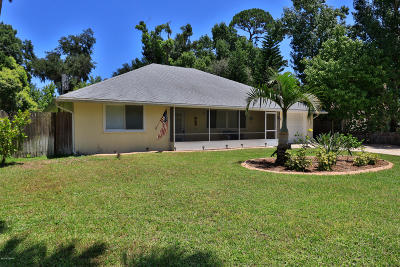 Port Orange Single Family Home For Sale: 780 Biro Drive