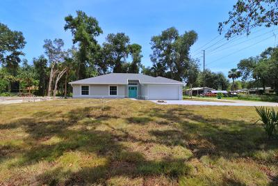 Volusia County Single Family Home For Sale: 319 Ingham Road