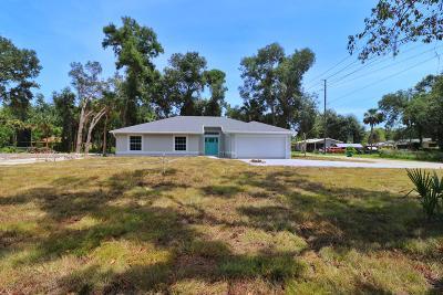 New Smyrna Beach Single Family Home For Sale: 319 Ingham Road
