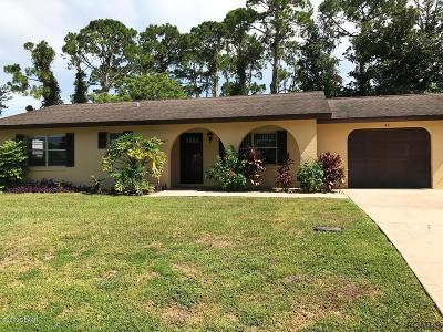 Palm Coast Single Family Home For Sale: 46 Fischer Lane