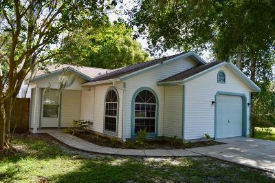 Port Orange Single Family Home For Sale: 819 McDonald Road