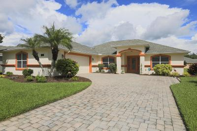 Port Orange Single Family Home For Sale: 4276 Mayfair Lane