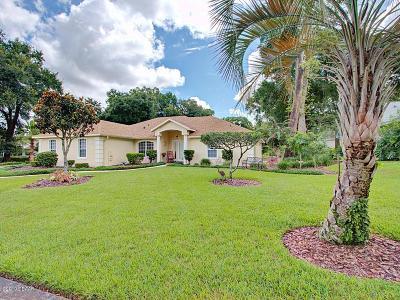 Deland Single Family Home For Sale: 1116 W Glen Falls Road