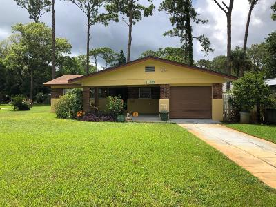 Daytona Beach Single Family Home For Sale: 1139 Orange Avenue