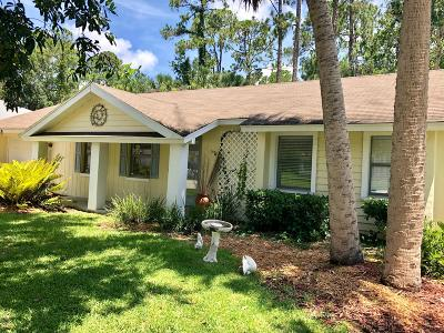 Palm Coast Single Family Home For Sale: 11 Porpoise Lane