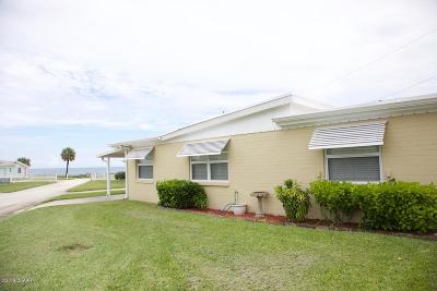 Ormond Beach Single Family Home For Sale: 3 Ocean View Drive