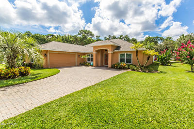 Port Orange Single Family Home For Sale: 4273 Mayfair Lane