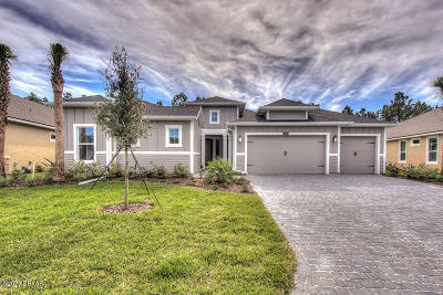 Ormond Beach Single Family Home For Sale: 876 Creekwood Drive