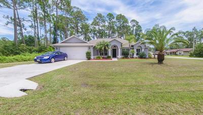 Palm Coast Single Family Home For Sale: 2 Brian Lane