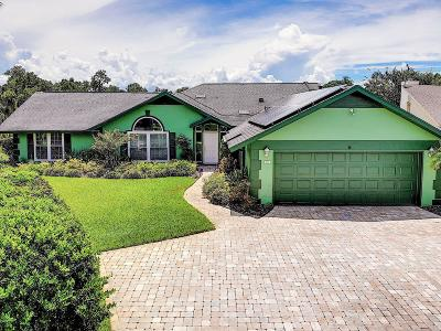 New Smyrna Beach Single Family Home For Sale: 211 Bromely Circle