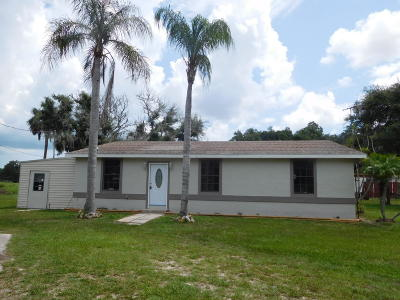 New Smyrna Beach Single Family Home For Sale: 3737 Lacey Lane