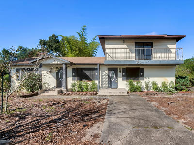 Deland Single Family Home For Sale: 732 N Stone Street