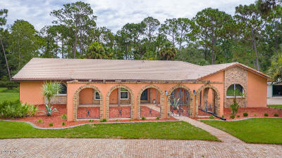 Ormond Beach Single Family Home For Sale: 38 W Winchester Road