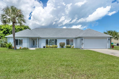Daytona Beach Single Family Home For Sale: 2904 River Point Drive