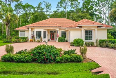 Palm Coast Single Family Home For Sale: 71 Eastwood Drive