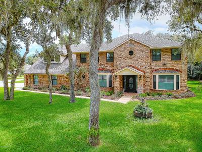New Smyrna Beach Single Family Home For Sale: 802 Silk Oak Court