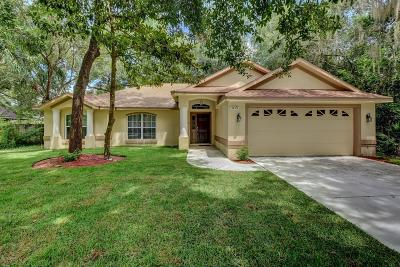 Deland Single Family Home For Sale: 3624 Royal Fern Circle