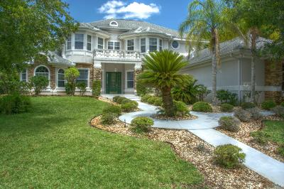 Palm Coast Single Family Home For Sale: 44 Old Oak Drive