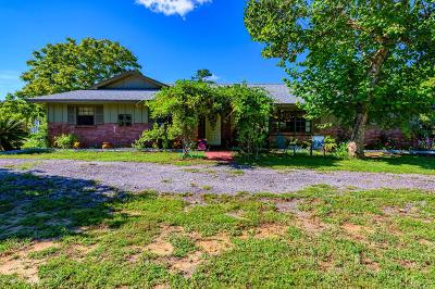 Port Orange Single Family Home For Sale: 1294 Country Road