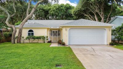 Ponce Inlet Single Family Home For Sale: 73 Glenview Avenue