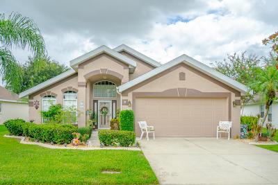 Daytona Beach Single Family Home For Sale: 23 Cormorant Circle