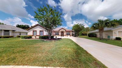 Palm Coast Single Family Home For Sale: 47 Mount Vernon Lane
