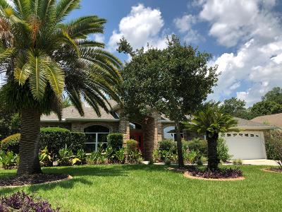 Ormond Beach Single Family Home For Sale: 43 Coquina Point Drive