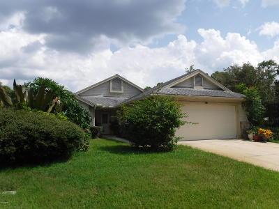 Daytona Beach Rental For Rent: 131 Morning Dove Court
