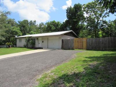 Deland Single Family Home For Sale: 539 N Delaware Avenue
