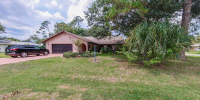 Palm Coast Single Family Home For Sale: 133 Berkshire Lane