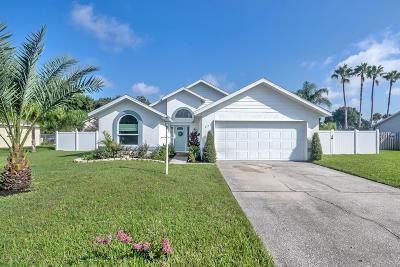 Port Orange Single Family Home For Sale: 825 Hudson Lane