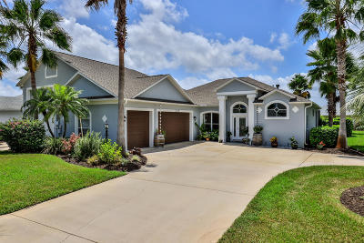 Port Orange Single Family Home For Sale: 3106 Springwater Court