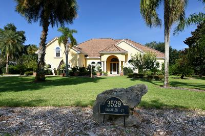 Ormond Beach Single Family Home For Sale: 3529 Kilgallen Court