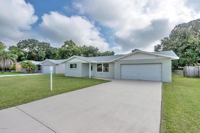 Daytona Beach Single Family Home For Sale: 377 Dubs Drive