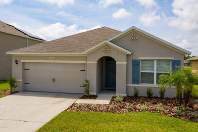 Port Orange Single Family Home For Sale: 1740 Savannah Lane