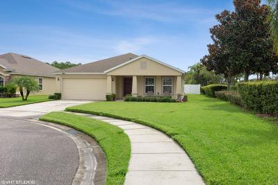 Port Orange Single Family Home For Sale: 5353 Peach Blossom Boulevard