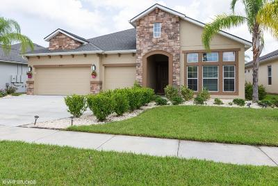 Port Orange Single Family Home For Sale: 6867 Forkmead Lane