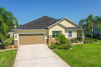 Palm Coast Single Family Home For Sale: 33 Angela Drive