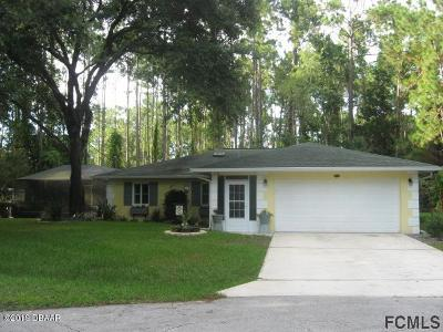 Palm Coast Single Family Home For Sale: 8 Largo Place
