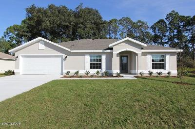 Palm Coast Single Family Home For Sale: 78 Roxboro Drive