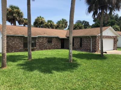 Daytona Beach Single Family Home For Sale: 1229 Mardrake Road