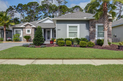 New Smyrna Beach Single Family Home For Sale: 310 Leoni Street