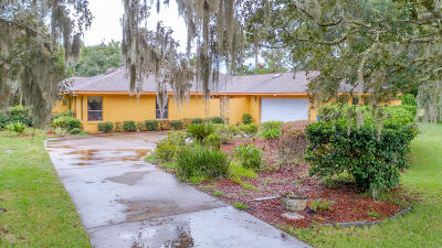 Ormond Beach Single Family Home For Sale: 32 Village Drive