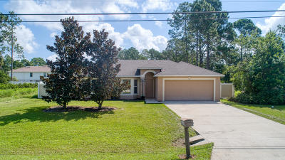 Palm Coast Single Family Home For Sale: 131 Rae Drive
