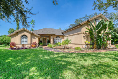 Ormond Beach Single Family Home For Sale: 6 Fox Cliff Way