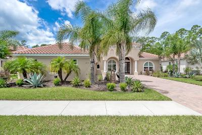 New Smyrna Beach Single Family Home For Sale: 2815 S Asciano Court
