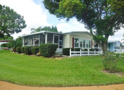 Port Orange Single Family Home For Sale: 704 Fieldstone Avenue